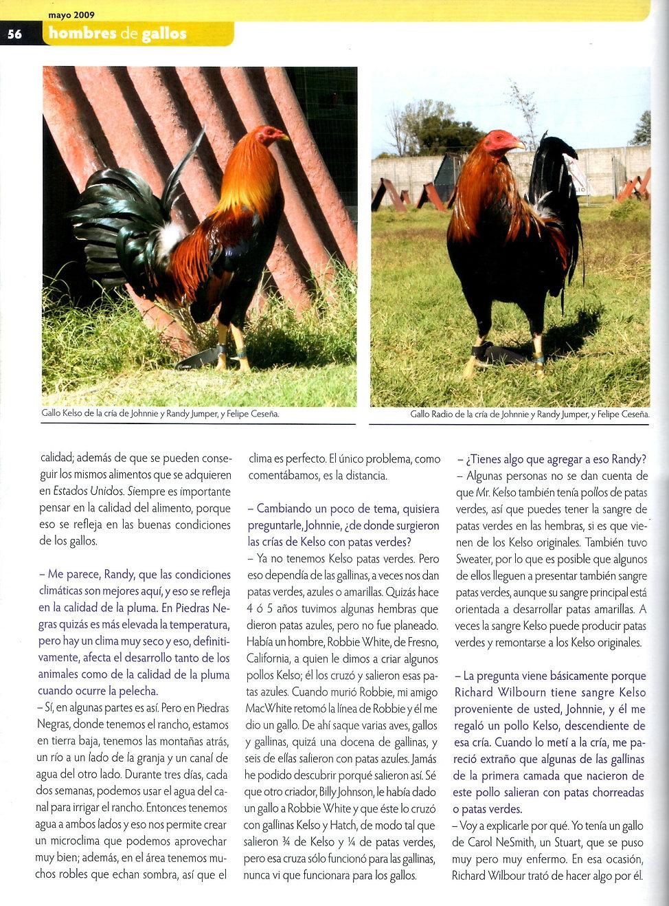 entrevista de gallos pie de cria a potre