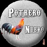 POTRERO NUEVO - GALLOS DE COMBATE Y PIE