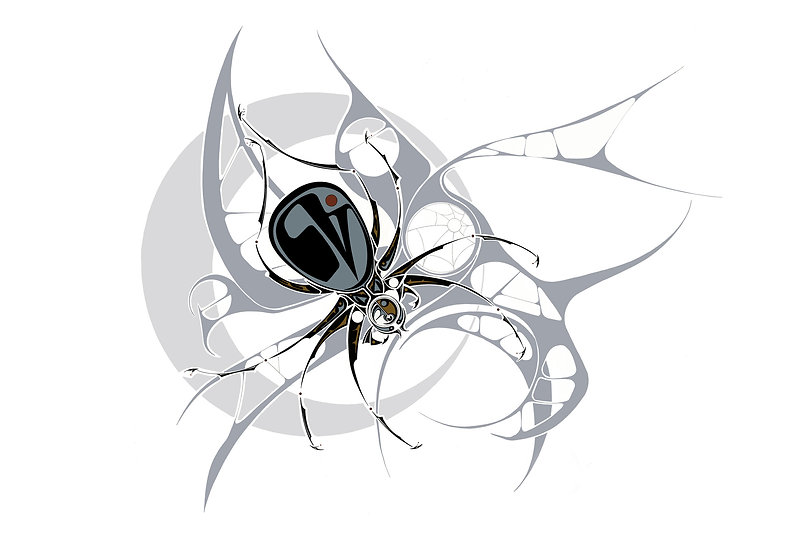 Spider-Il_rev.jpg