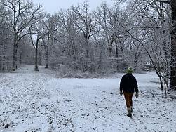 winter-Pen Brady wildlife artist