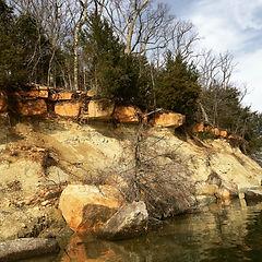 Bank on Stockton Lake, Missouri, Pen Brady wildlife art