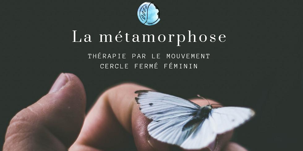 La métamorphose : thérapie par le mouvement