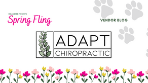 Adapt Chiropractic is the newest place to get adjusted!