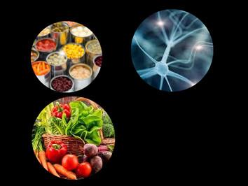 Equilibrio Hormonal con Alimentación