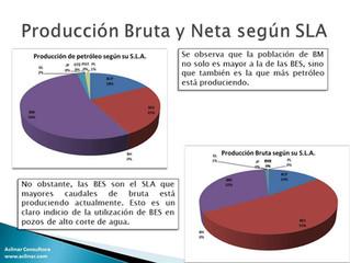 Análisis Estadístico de los S.L.A. en la Argentina a Mayo del 2015