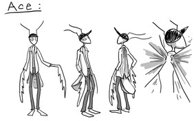 Character Sheet, Ace