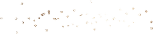 white-gold_0010_t.png