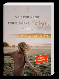 Boxshot_Spiegel.png