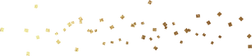 white-gold_0022_g.png