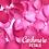 Thumbnail: Cashmere Petals Fidget Sniffer