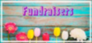 fundraiser banner.jpg