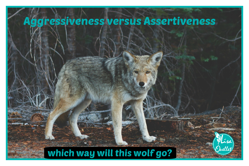 wolf aggressive vs assertive.png
