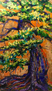 """Old Tree, 60"""" by 36"""""""