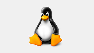 Mainline Linux (Community Support)
