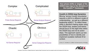 OODA loop and Cynefin