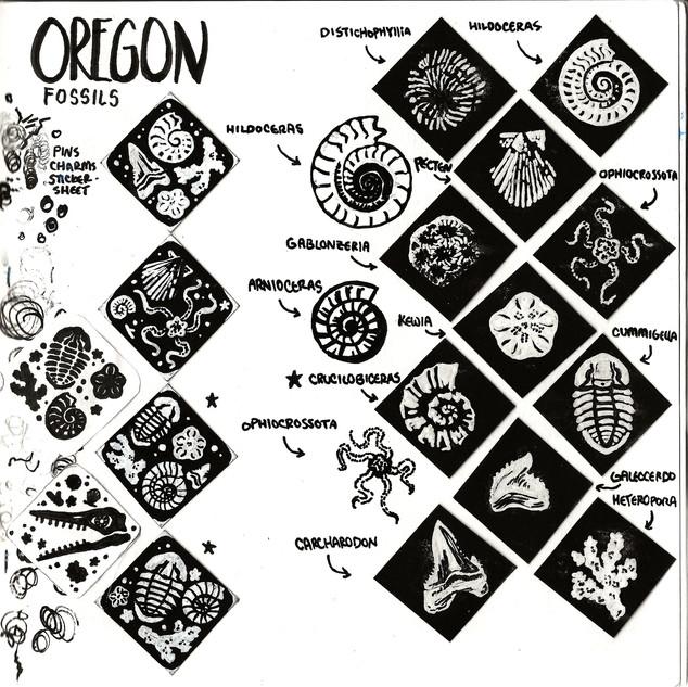 Oregon Fossils