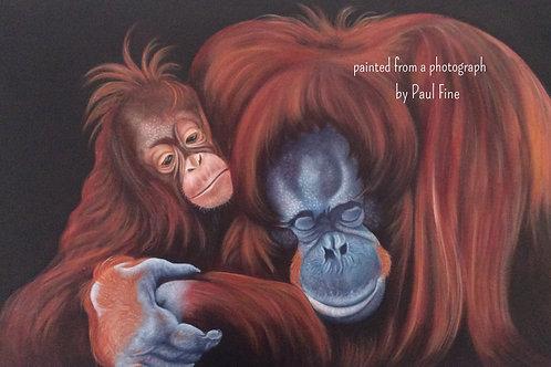 Orangutan painting