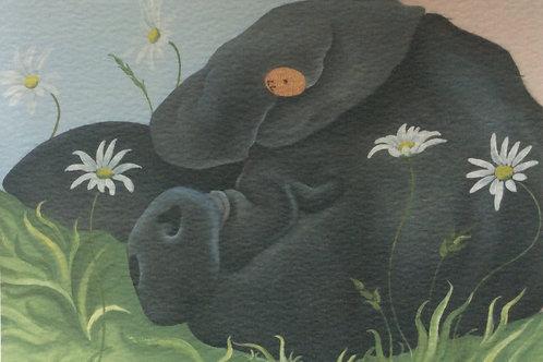 """Dolly Daydream"" the saddleback pig painting"