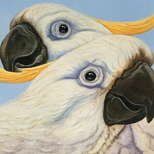 White parrot painting