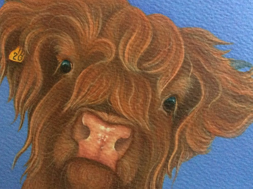 Highland cow painting