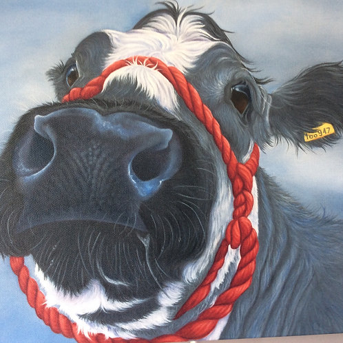 cow painting British Blue
