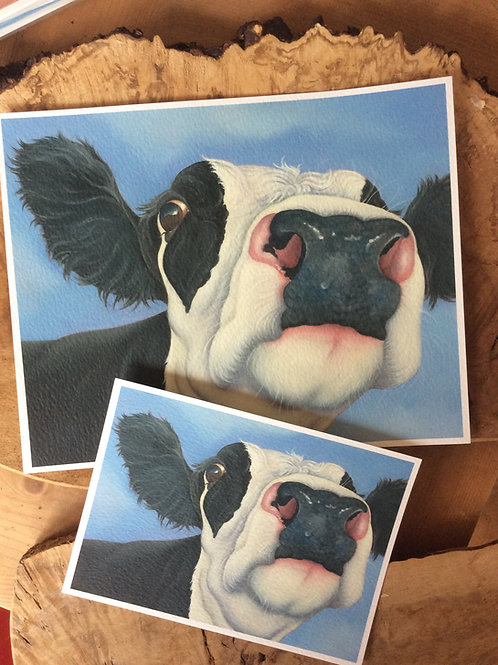 """""""Sweet Pea"""" the friesian cow painting"""