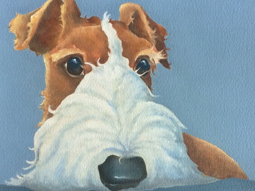 Wire haired fox terrier painting