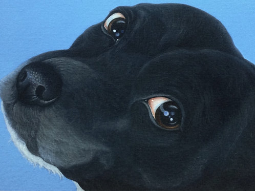 """Molly"" the staffordshire bull terrier painting"