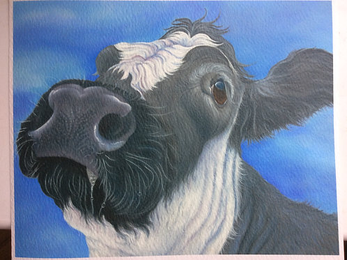 Dorothy the British Blue cow painting