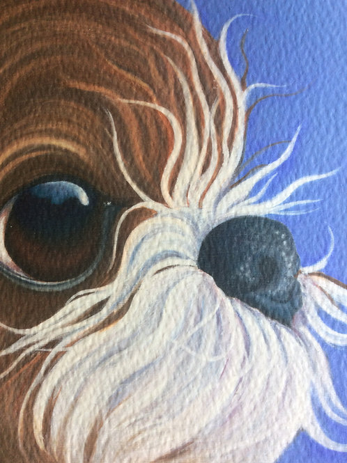 """Jumpy"" the shih tzu painting"