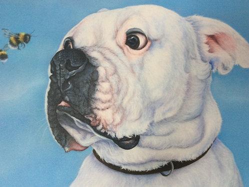 American bulldog painting