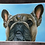 Thumbnail: French bulldog painting