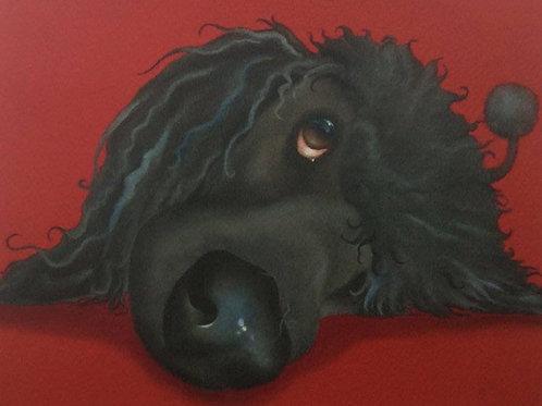 Black standard poodle painting