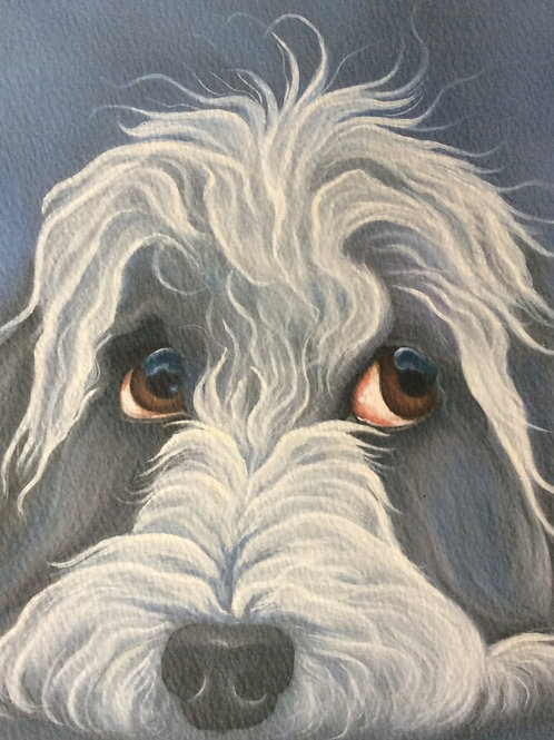 """""""Abbie"""" the bearded collie painting"""