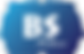 cropped-LOGO bs online.png