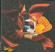 Denise Cummings - Sweet Birdie