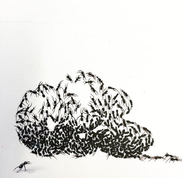 CES - Ants