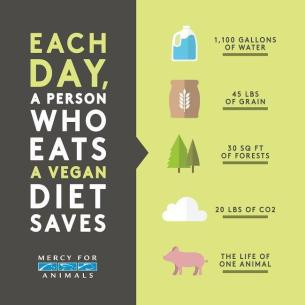 Image result for meatless monday
