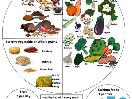 Nutrition 101: Macronutrients (carbs, fat and protein)