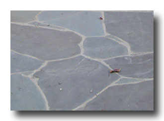 BlueStone Flagstone