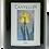 Thumbnail: Cantillon Iris 2018
