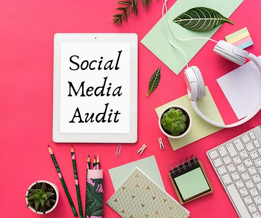Social Media Audit.png