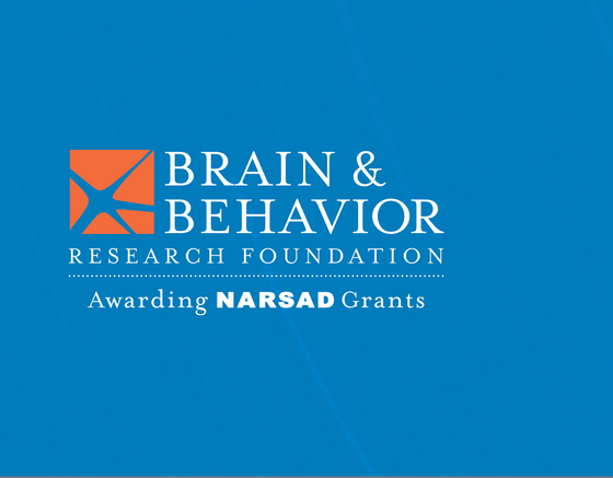 Grant success for our lab - Brain and Behaviour Foundation Young Investigator (NARSAD)