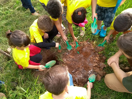 CSOL realiza projeto Sustentabilidade neste sábado (21)