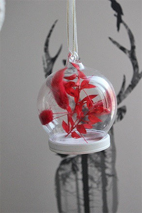 Red Dried Bauble