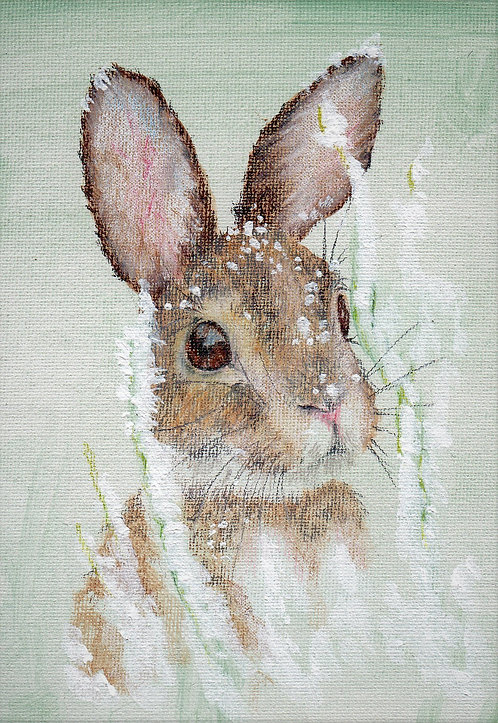 Blank card. Rabbit in snow. Print of painting by artist Sarah Caisey