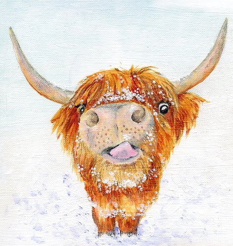Print of original painting of a Highland Coo by Sarah Caisey