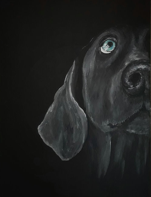 Blank card. Weimaraner. Print of original painting by Sarah Caisey