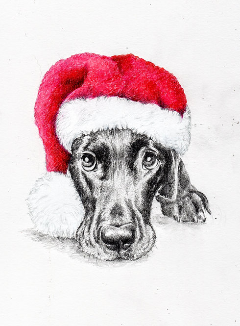 Print of an original drawing of a Christmas Pup by Sarah Caisey