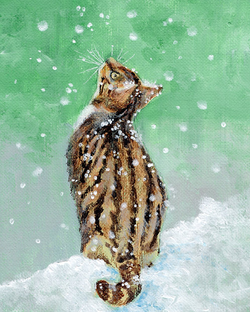 Print of original picture of a cat in the snow by Sarah Caisey